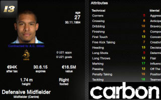 Carbon Skin 2013 for FM13