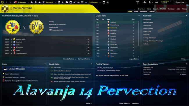 Alavanja 14 Pervection Skin for FM14