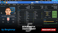 Bergkamp14 Transparent v5 skin for FM14