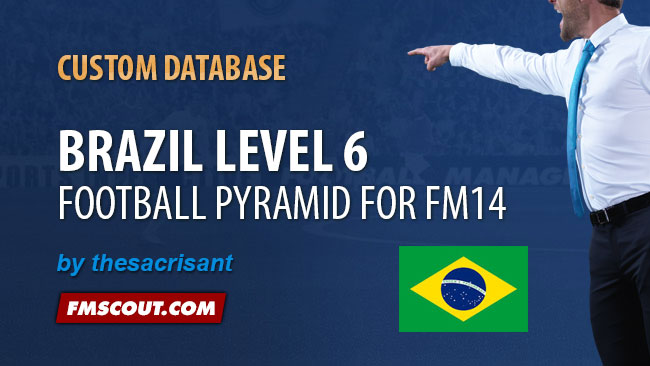 FM 2014 New Leagues - Brazil Level 6 for FM14