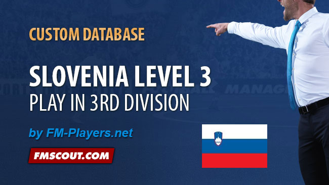 FM 2014 New Leagues - Slovenia level 3 for FM14