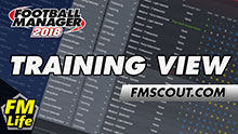 Individual Training View for FM18 by FM-Life