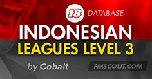 Indonesia Leagues Level 3