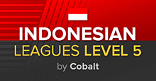 Indonesia Leagues Level 5 FM19