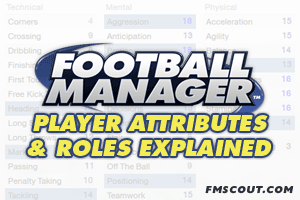 Football Manager Guides - Football Manager Basics: Player Attributes and Roles Explained
