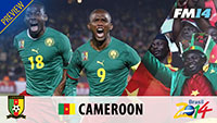 WC2014 Cameroon Preview