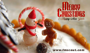 News - Merry Christmas & Happy New Year 2012